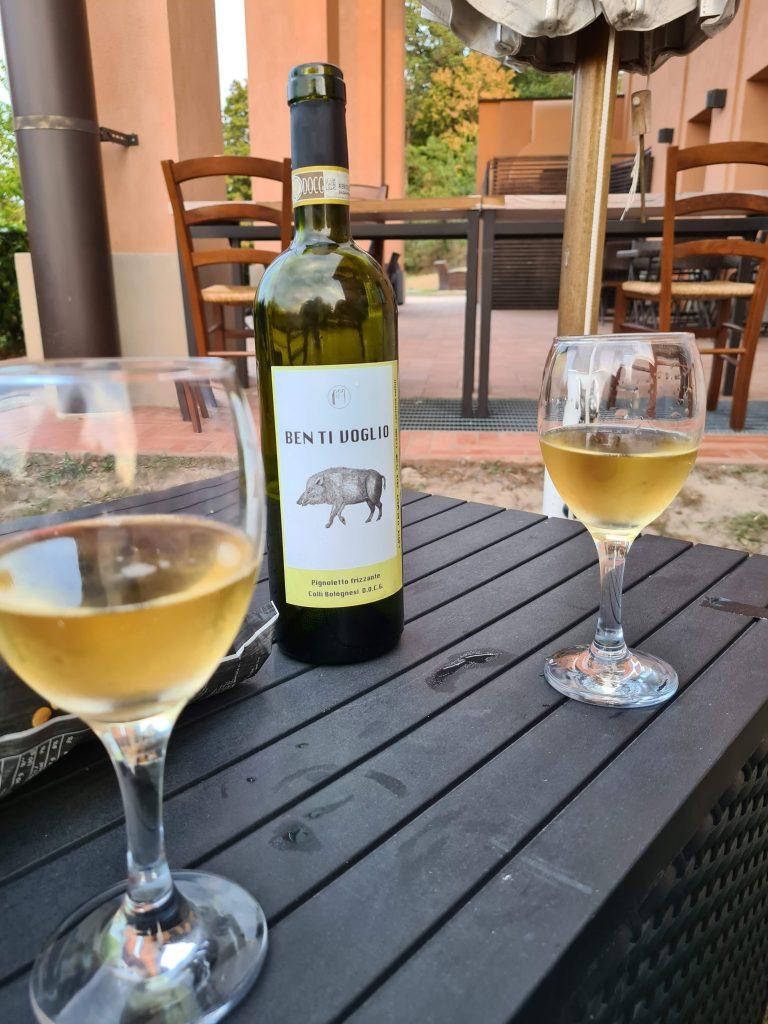 Emilia Romagna: Wein vom Weingut Ben Ti Voglio