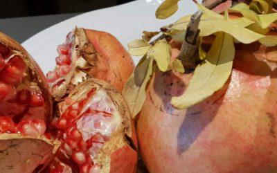 Emilia Romagna: Lohnenswerte Rundreise